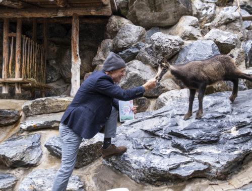 Die 12 Tiroler Bewegung von den Tieren lernen