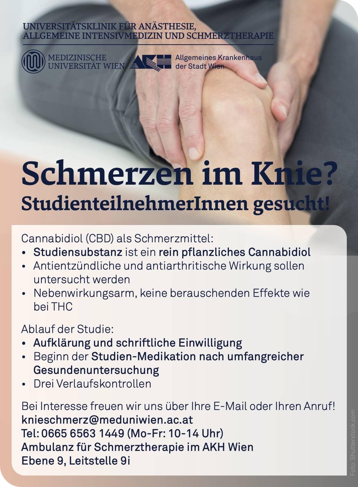 CBD und Kniearthrose